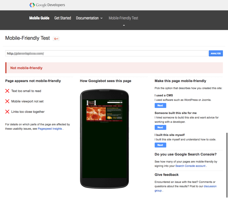 Restaurant mobile friendly website test